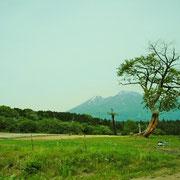 黒姫側から見た、妙高山です。