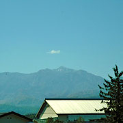 火打山の右下、立木の脇の白いものは焼山の噴煙です。