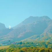 山頂付近の赤と、源泉の白です。