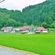 緑の中に佇む、毛見の集落です。