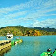 野尻湖も、そろっとワカサギシーズンと言うところです。