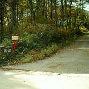 山に向かって、上がって行く、北の2号線道路。