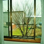 2階の裏窓からは開放感が溢れています。