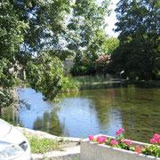 The Romède - Veillard - Bourg-Charente - Visit of Domaine Pautier