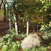 Fundort Worringer Reitweg Ecke Am Knickert, Landschaftsschutzgebiet, Foto H.Kuhlen, Aufnahme-Datum 09.11.2013