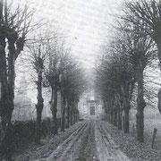 Historische Aufnahme der Allee, im Hintergrund Haus Kaldenhausen