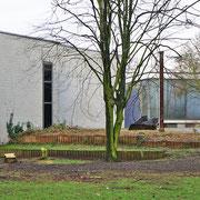 Das Umfeld der Skulpturen nach Baumfällungen und Strauch-Rodungen, Aufnahme-Datum: 04.02.2017