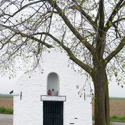 Winterlinde mit Dionysiuskapelle Vorderansicht, Foto H.Kuhlen, Aufnahmedatum 26.04.2008
