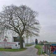 Winterlinde mit Dionysiuskapelle mit unsensiblem Umfeld, Foto H.Kuhlen, Aufnahmedatum 26.04.2008