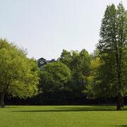 Partie im Park mit der Türkischen Baumhasel (rechts im Bild) Foto HK.; Aufnahme-Datum: 21.04.2018