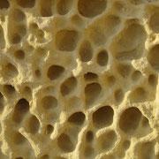 Erosionswaben in Kalkstein
