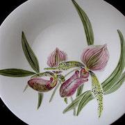 Orchidee / flache Schale