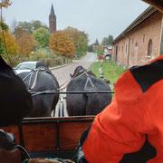 Beschaulich ging es zum Abschluss per Pferdekutsche durch die Uckermark.