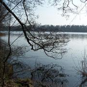 Blick auf den Summter See