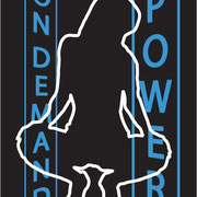 On Demand Power, 2012