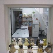 待合室・小窓より診察風景が覗けます。(こっそりお願いします。)