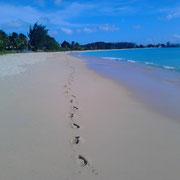 Strand von Barbados