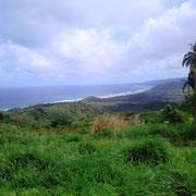 Atlantikküste von Barbados