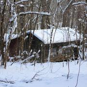Bienenhaus im Winter