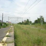 6月にきた時は線路が見ていましたが、今は雑草が。JRは何もしないそうで、沿線の方が雑草が育ちすぎて困っていました
