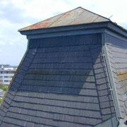 GFK-Antennenverkleidung Dachflächenelement