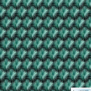 Bismarck Palm Orchids: palms