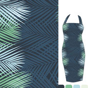 Areca Palm: Wide stripe