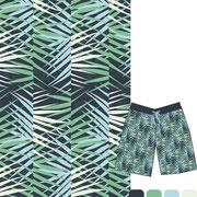 Areca Palm: Leaves pattern brush