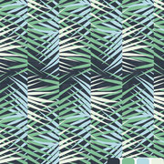 Areca Palm: Leaves pattern brush