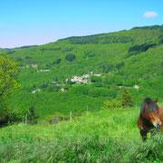 vue du gite Pays Cathare Gites de France dans l'Aude à Castan en Montagne noire