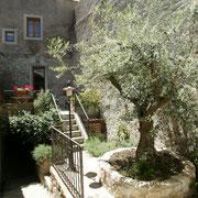 jardin terrasse gite gite Pays Cathare Gites de France dans l'Aude à Caunes Minervois