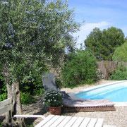 piscine gite pays cathare dans l'Aude label gites de france à Pouzols minervois