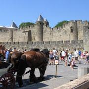 Cité de Carcassonne à proximité du gite pays cathare aux écuries de sainte croix