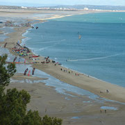 chambres d'hotes aude pays cathare à Leucate