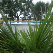 piscine gite Pays Cathare Gites de France dans l'Aude à Moussoulens en Carcassonnais