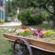 jardin fleuri gite Pays Cathare Gites de France dans l'Aude à Mailhac en Minervois