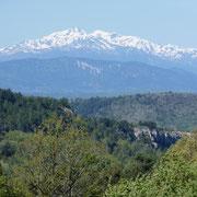 vue sur les pyrénées depuis la terrasse gite dans l'Aude pays cathare gites de france à Véraza