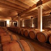 Chai de vieillissement de vin giteles Iris au Domaine viticole Saint Jacques d'Albas à Laure Minervois dans l'Aude