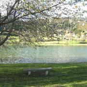 lac de Belcaire à proximité gite pays cathare gites de france dans l'aude à Roquefeuil