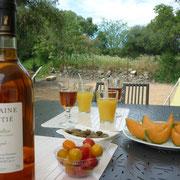 dégustation gite dans l'Aude à Roquefort des Corbieres, label pays cathare et gites de france