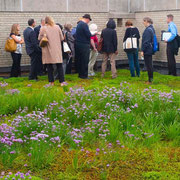 Green Roof Tour, Bronx, NY 2012