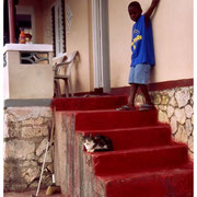 Boy and Cat on the Steps, Jamaica, W.I. 2003