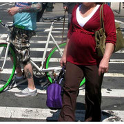Bikes & Babies Intersecting, NYC 2008