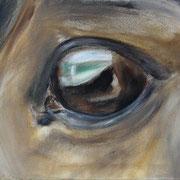 Auge Grimur, Acryl auf Baumwollgewebe, 35 x 40 cm, 2004