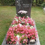 Einzelstein Paradiso Waldfriedhof Ansbach