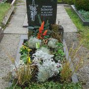 Einzelgrab Nero Impala Friedhof Lehrberg
