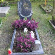 Einzelgrab Blue Pearl Waldfriedhof Ansbach