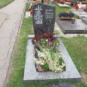 Einzelgrab Orion mit Steinradierung Friedhof Eyb