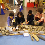 静岡の石の観察です。