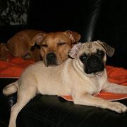 mit ihrem neuen Bruder
